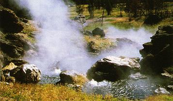 Boulder spring, inthe lowergeyser basin boulder springbacteria